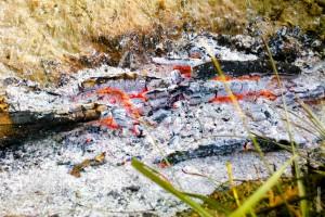 bonfire ashes
